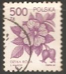 Sellos de Europa - Polonia -  Rosa canina