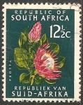 Sellos de Africa - Sudáfrica -  Protea