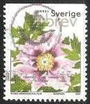Stamps Sweden -  Peonía Árbol, _