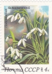 Stamps Russia -  flores
