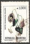 Sellos de America - Argentina -  Patito (Aristochia littoralis)