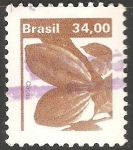 Stamps Brazil -  Cacao