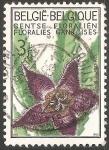 Stamps Belgium -  Cactus