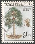 Stamps Czech Republic -  Pino silvestre
