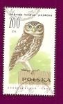 Sellos de Europa - Polonia -  Fauna -  Aves - Mochuelo Europeo