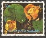 Sellos del Mundo : Asia : Emiratos_Árabes_Unidos : Fuyaira flores