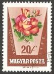 Sellos del Mundo : Europa : Hungría : Floribunda (Rosa)
