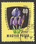 Sellos de Europa - Hungría -  kek noszirom (Iris )