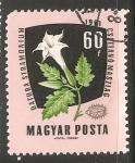 Sellos de Europa - Hungría -  Datura stramonium