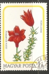 Stamps Hungary -  tuzes liliom