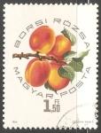 Sellos de Europa - Hungría -  Rosa de Borsi temprano (albaricoque)