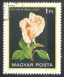 Stamps Hungary -  Michèle Meilland (Rosa)