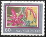 Sellos de Europa - Hungría -  Bromeliaceae