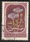 Stamps Hungary -  buzavirag