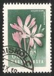Sellos de Europa - Hungría -  Colchicum arenarium