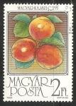 Stamps Hungary -  frutas