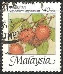 Sellos de Asia - Malasia -  Nephelium lappaceum