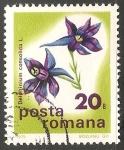Stamps Romania -  Delphinium consolida