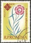 Sellos de Europa - Rumania -  Callizonus Dianthus-Clavel