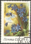 Stamps Russia -  Siberian squills