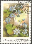 Stamps Russia -  Anemone hepatica