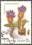 Stamps Russia -   Euryale ferox