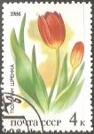 Stamps Russia -   Tulipa