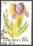 Sellos de Europa - Rusia -  Iris