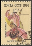 Stamps Russia -  Ophrys apifera-Orquidea abeja