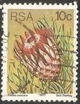 Sellos de Africa - Sudáfrica -  Protea aristata
