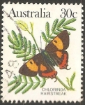 Stamps : Oceania : Australia :  Hairstreak sedoso