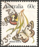 Stamps : Oceania : Australia :  wood white