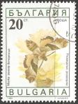 Sellos de Europa - Bulgaria -  Proserpinus proserpina