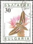 Sellos del Mundo : Europa : Bulgaria :  hyles lineata