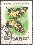 Sellos de Europa - Hungría -  Papilio machaon