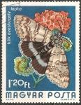 Sellos de Europa - Hungría -  Catocala fraxini