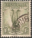 Sellos de Oceania - Australia -  Lyrebird-Ave lira