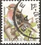Stamps Belgium -  sizerin flammé barmsijs