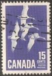 Sellos de America - Canadá -  Gansos Geese-Ganso blanco