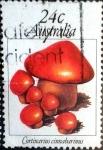 Sellos de Oceania - Australia -  Intercambio 0,40 usd 24 cent. 1981
