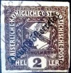 Sellos del Mundo : Europa : Austria :  Intercambio ma4s 0,85 usd 2 h. 1919