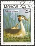Stamps Hungary -  Podiceps cristatus