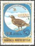 Stamps Mongolia -  Stercorarius skua