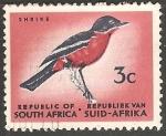 Sellos de Africa - Sudáfrica -  shrike
