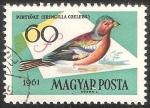 Sellos de Europa - Hungría -  Fringilla coelebs-pinzón vulga