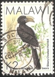 Stamps : Africa : Malawi :  Silvery cheeked hornbill