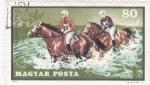 Stamps Hungary -  carrera hípica