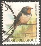 Sellos del Mundo : Europa : Bélgica : Hirundo rustica-golondrina común