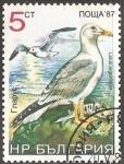 Sellos de Europa - Bulgaria -  Larus argentatus-gaviota argéntea