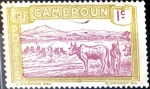 Stamps : Africa : Cameroon :  Intercambio 0,20 usd 1 cent. 1925